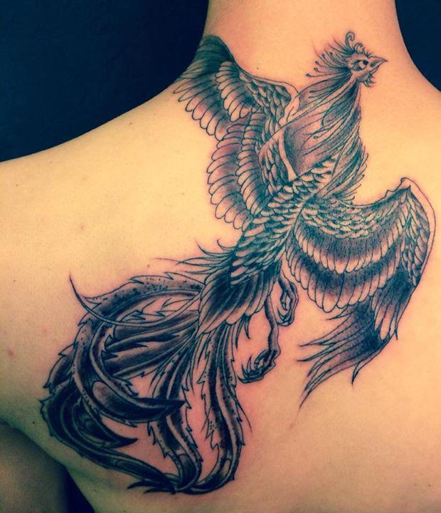 Evolution Positif Tattoo Inkin