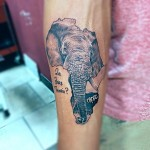 inKin-tatouage-elephant-afrique-que-faire-demain-bras-GIO TATTOO.jpg