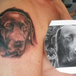 inKin-tatouage-tete-chien-bras-J AURAI TA PEAU TATOUAGE.jpg