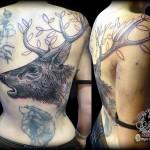 inkin-tatouage-cerf-dos-EMPREINTE BODYART-generaliste.jpg