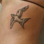 inkin - tatouage hirondelle sur dos - cooloeuvre tatouage.JPG