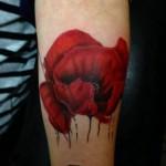 inkin-tatouage-coquelicot-bras-deep-tattoo-realiste.jpg