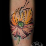 inkin - tatouage coquelicot sur bras - black ink tattoo.jpg
