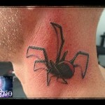 inkin-tatouage-araignee-cou-ELCY TATTOO-generaliste.jpg