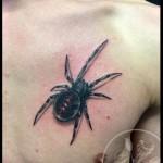inkin - tatouage araignée sur poitrine - black bird ta2.jpg
