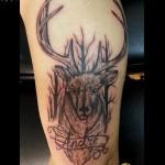 inkin-tatouage-cerf-bras-DR-JEK-INK-graphique.jpg