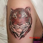 inkin - tatouage tête de tigre sur épaule - cyril tattoo 33.jpg