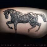 inkin - tatouage marco c materese (1)