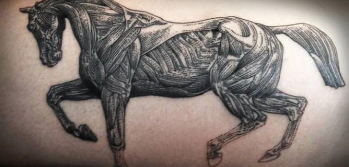 Les tatouages à l'esthétique fine de Marco C Matarese
