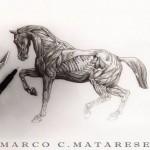 inkin - tatouage marco c materese (2)
