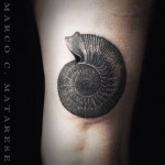 inkin - tatouage marco c materese (4)